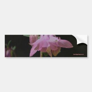 Pink Columbine Flower Photo Bumper Sticker