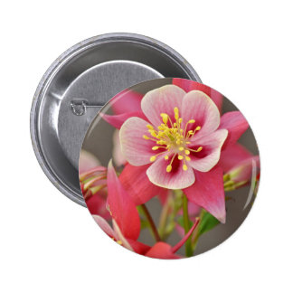 Pink columbine flower print button