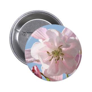 Pink Columbine Flowers Button