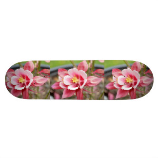 Pink Columbine Skate Board