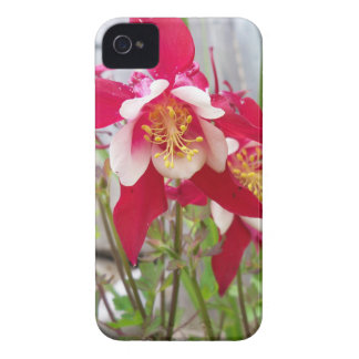 Pink Columbines iPhone 4 Covers