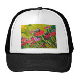 Pink Cone Flowers Swaying In The Breeze Mesh Hats