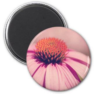 pink coneflower fridge magnets