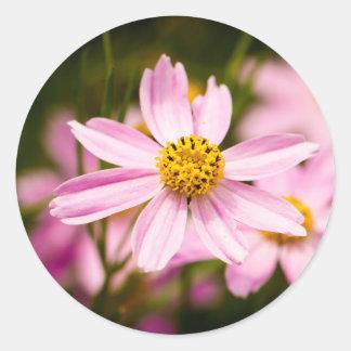 Pink Coneflowers Classic Round Sticker