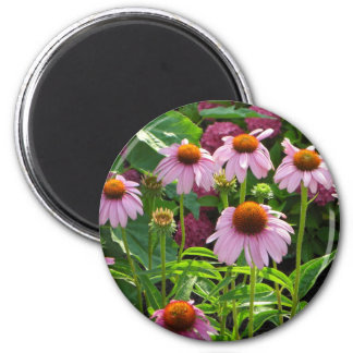 Pink Coneflowers Magnet