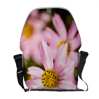 Pink Coneflowers Courier Bags