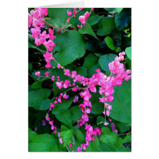 Pink Coral Vine Card