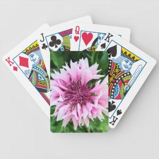 Pink cornflower card decks