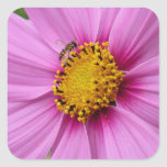 Pink Cosmos and Bee Pretty Wildflower Square Sticker