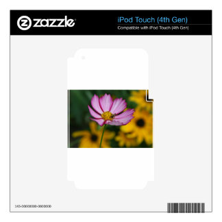 Pink Cosmos and Black Eyed Susans iPod Touch 4G Decals