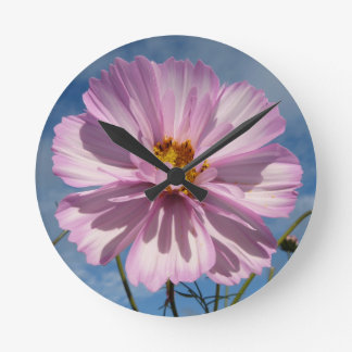 Pink Cosmos flower against blue sky Round Clock