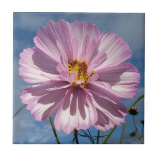 Pink Cosmos flower against blue sky Tile