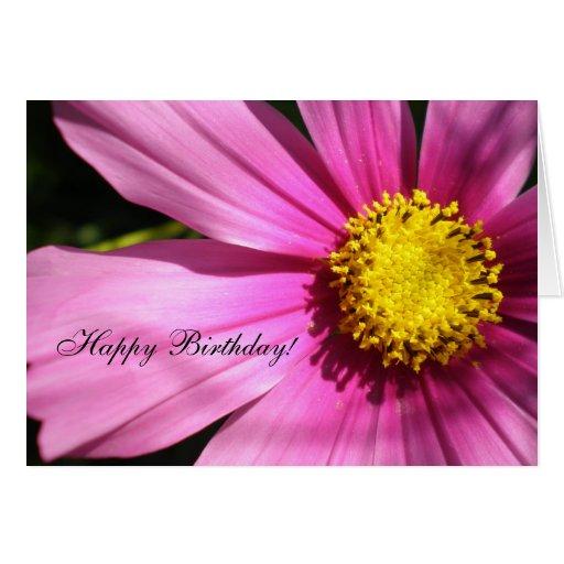 Pink Cosmos Flower Happy Birthday Greeting Card