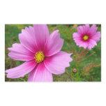 Pink Cosmos Flowers Rectangular Sticker