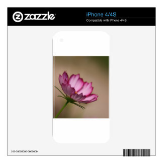 Pink cosmos picote Blossom Skin For The iPhone 4S