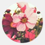 'Pink Cosmos' Seal/Sticker