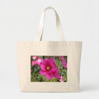 Pink Cosmos with a wasp Bags
