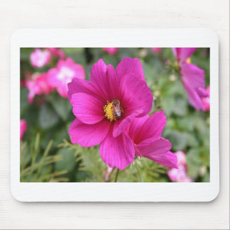 Pink Cosmos with a wasp Mouse Pad