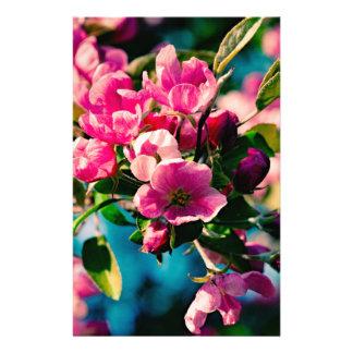 Pink Crab Apple Flowers Flyer