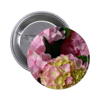 Pink & Cream Hydrangeas Pinback Button