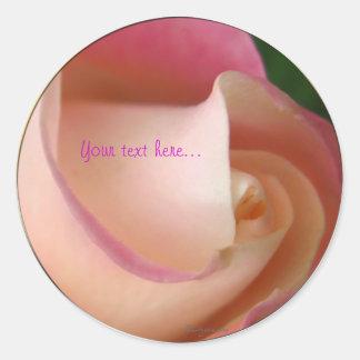 Pink Cream Wedding Rose Seal Classic Round Sticker