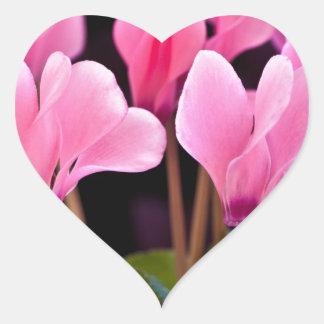 Pink Cyclamen Heart Sticker