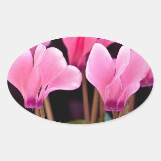 Pink Cyclamen Oval Sticker