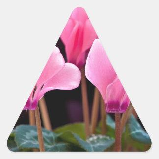 Pink Cyclamen Triangle Sticker