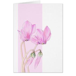 Pink Cyclamens Card card
