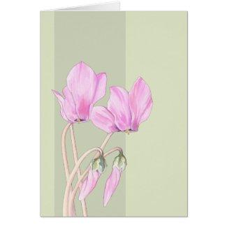 Pink Cyclamens green Card card