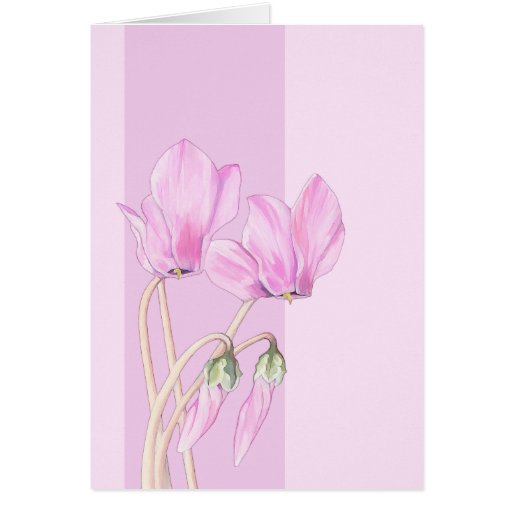 Pink Cyclamens pink Card