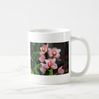 Pink Cymbidium flowers Mug