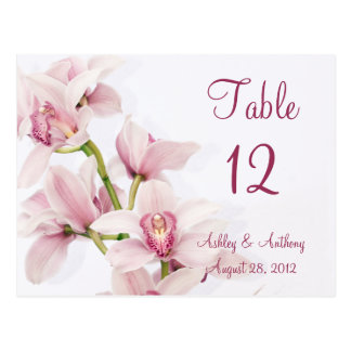 Pink Cymbidium Orchid Floral Wedding Table Cards Post Card
