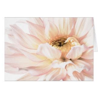 Pink Dahlia Artwork - Keywords: dahlia; beautiful; Card