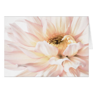 Pink Dahlia Artwork - Keywords: dahlia; beautiful; Greeting Card
