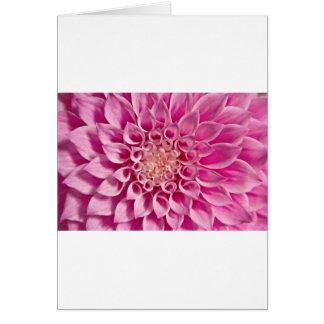 Pink Dahlia Close Up Card