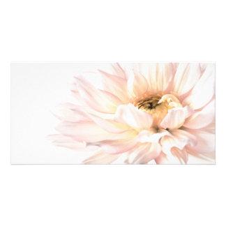 Pink Dahlia Flower - Dahlias Customized Template Photo Card Template