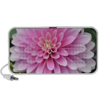 Pink Dahlia Flower Doodle Speaker