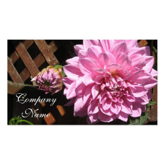 Pink Dahlia Flower Double-Sided Standard Business Cards (Pack Of 100)