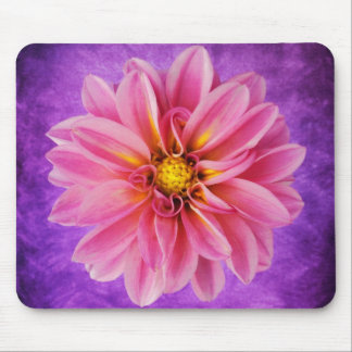 Pink Dahlia Flower on Purple Watercolor Background Mouse Pad