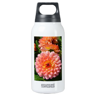 Pink dahlia flowers in bloom insulated water bottle