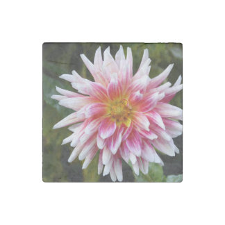Pink Dahlia Marble Magnet