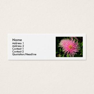 Pink Dahlia Profile Card