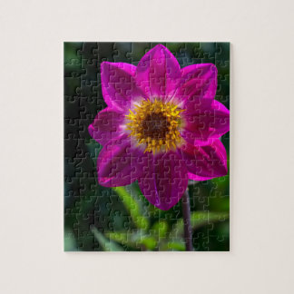 pink dahlia puzzle with giftbox