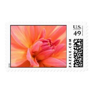 Pink dahlia wedding bridal shower stamp