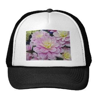 Pink Dahlias Trucker Hat