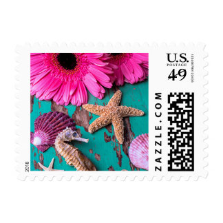 Pink Daises And Seahorse With Starfish Postage