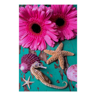 Pink Daises And Seahorse With Starfish Poster