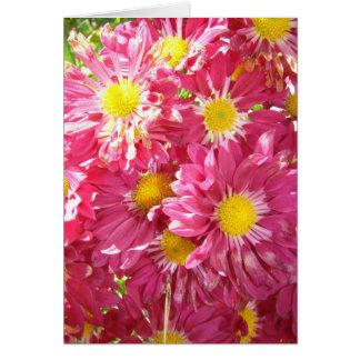 Pink Daisey Card
