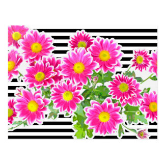 Pink Daisies / Asters Bouquet & Strips + your idea Postcard
